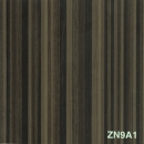 ZN9A1.jpg