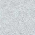 Grey_Pampas_4168-60