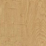 Limber_Maple_10734-60